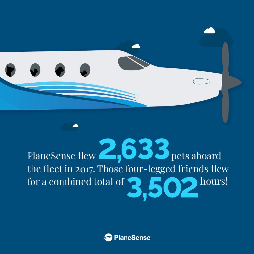 PlaneSense pets flown